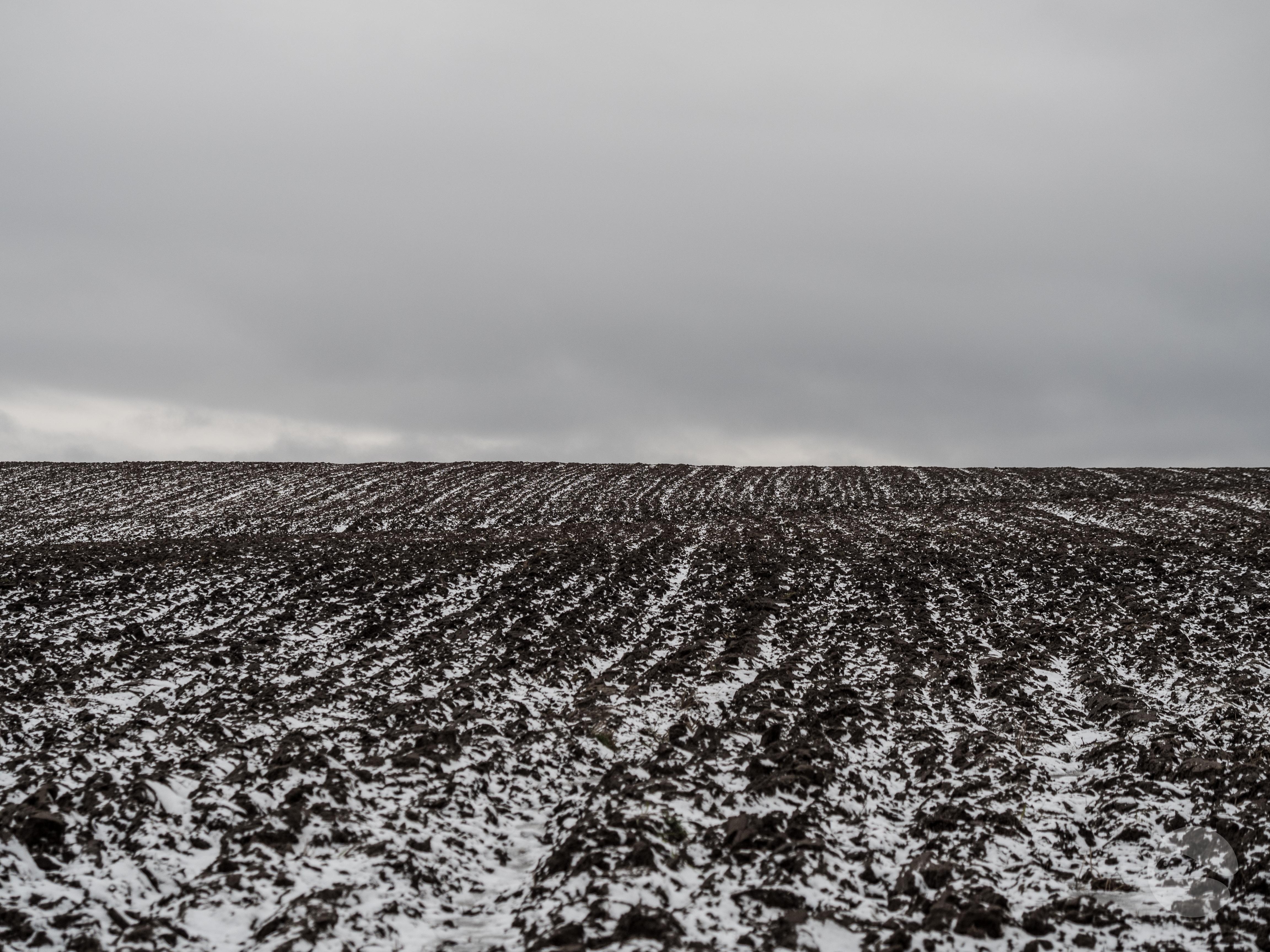 Fields in the winter