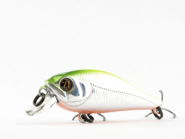 Pontoon21Cheerful 40F SR (2)
