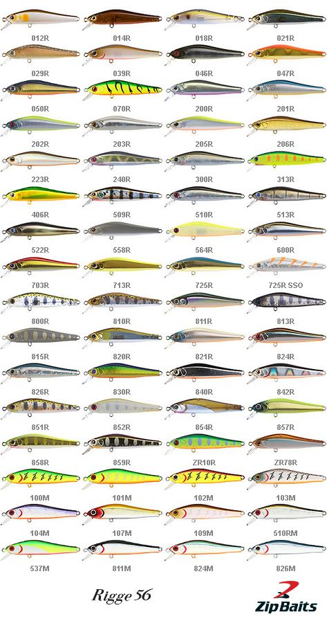 Zipbaits Rigge Color chart