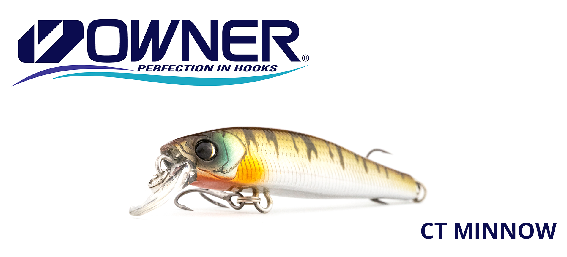 owner ct minnow