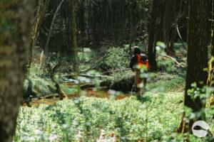 Small trout river
